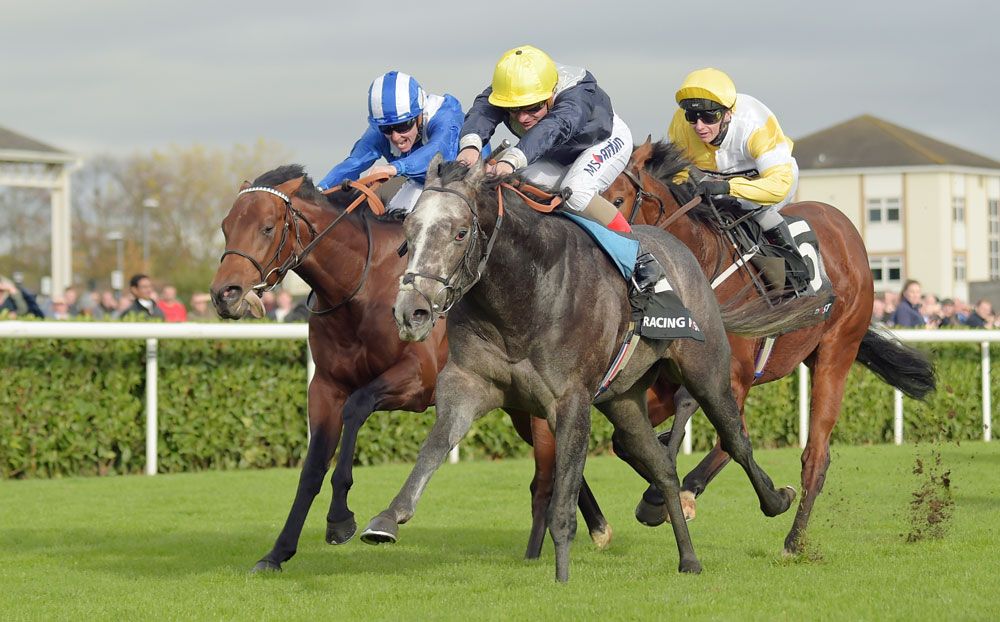 The highest qualifying sectional rating was achieved by Excelebration's son, Speak In Colours, seen here beating another qualifier, Mutaaqeb, at Doncaster