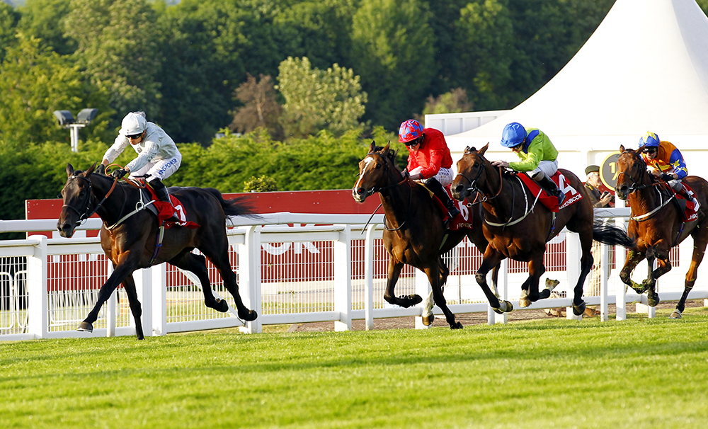Austrian School (blue cap) is beaten less than 2 lengths by leading stayer Dee Ex Bee in the Group 3 Henry II Stakes at Sandown.