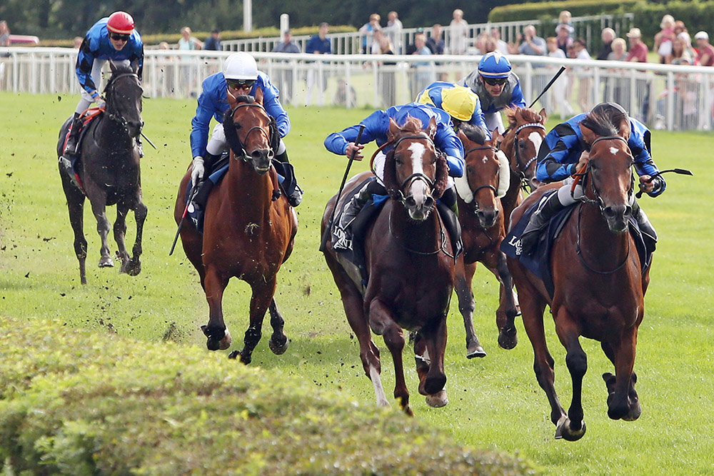 Soldier Hollow's top-rated performer, Dschingis Secret (right), defeats the Dubai Sheema Classic and Eclipse Stakes winner Hawkbill in the Group 1 Grosser Preis von Berlin.