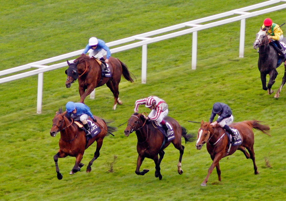 Farhh (blue colours) defeats Cirrus des Aigles and Ruler of the World in the Group 1 Champion Stakes at Ascot.