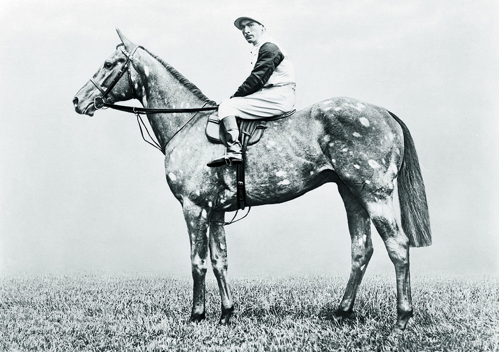 "The Tetrarch, (also known as ""The Spotted Wonder""), was Champion Sire in 1919, as was his son Tetratema ten years later. Both stood at Ballylinch Stud"