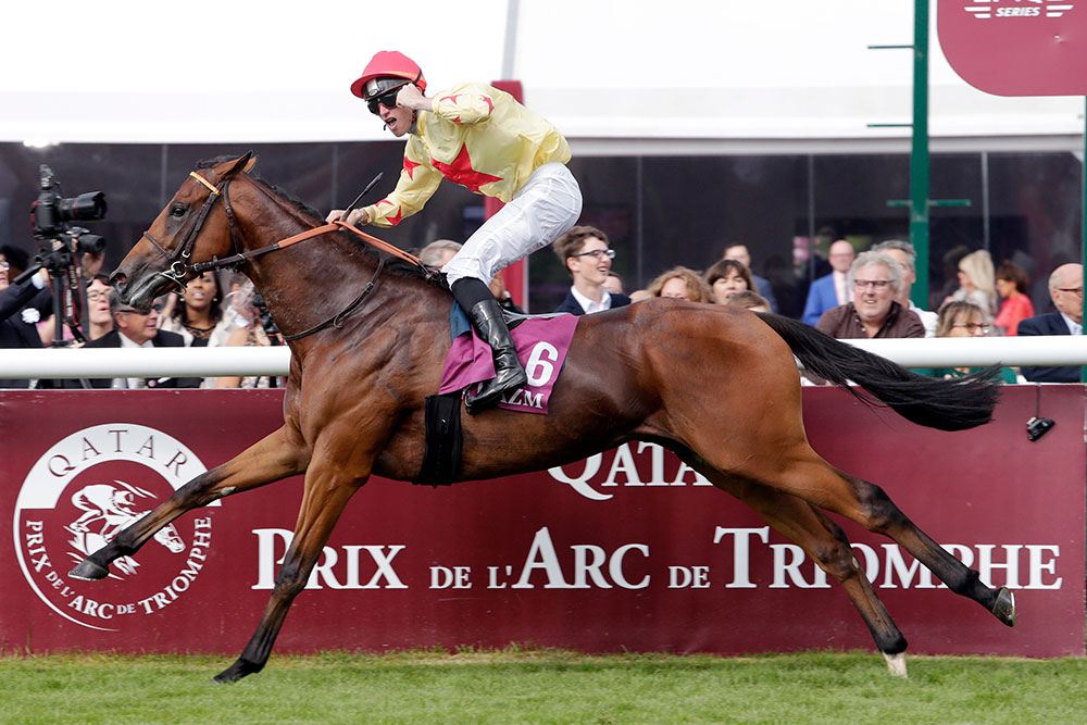 Prix Jean-Luc Lagardere winner, National Defense. The son of Invincible Spirit joins his sire at the Irish National Stud at a competitive fee of €12,000.