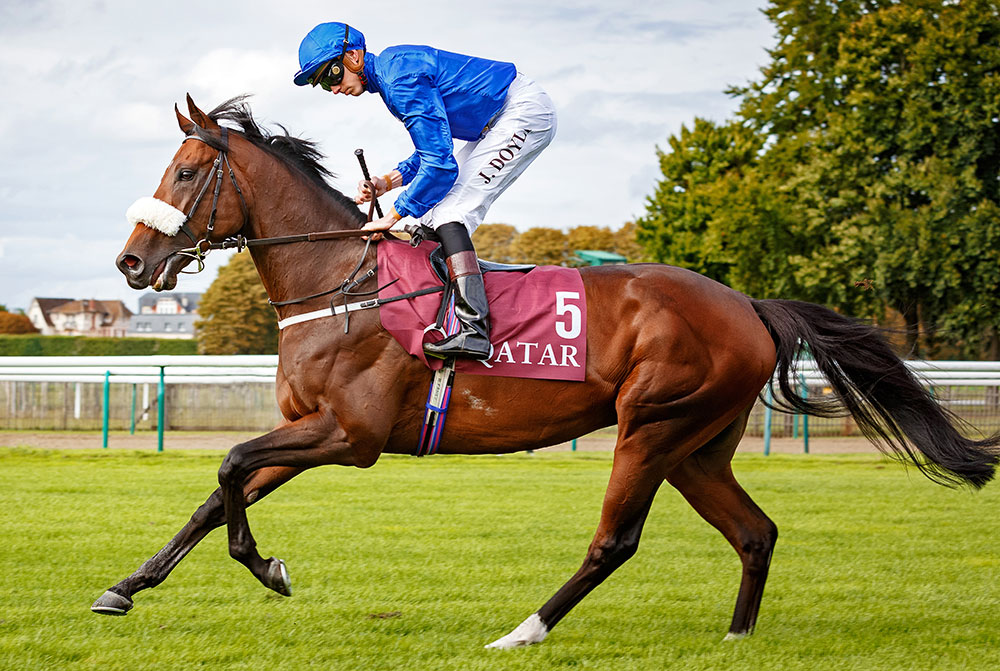 Four-time Group 1 winner and European Champion Miler Ribchester. He retires to Kildangan Stud at a fee of €30,000.