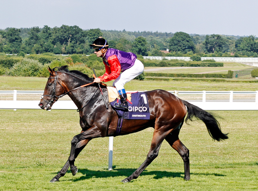 Group 2 Hardwicke Stakes winner Dartmouth, who joins the roster at Shade Oak Stud in Shropshire