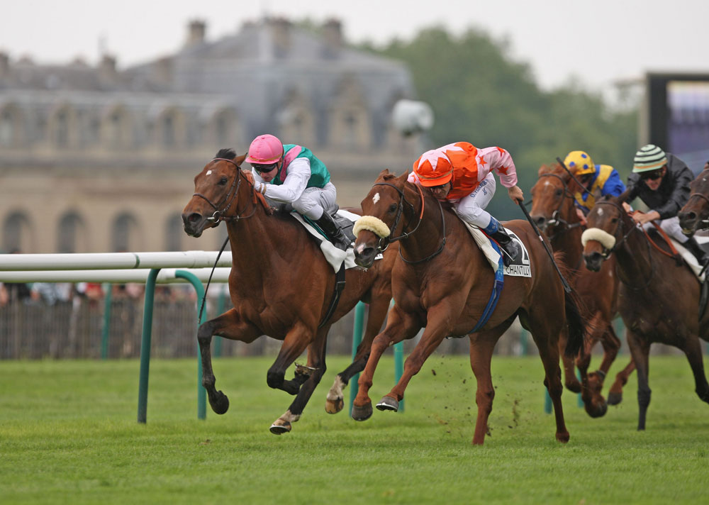A Group 1 winner in both Hong Kong (twice) and the USA, Doctor Dino (orange colours) also won the Group 2 Grand Prix de Chantilly in his native France.