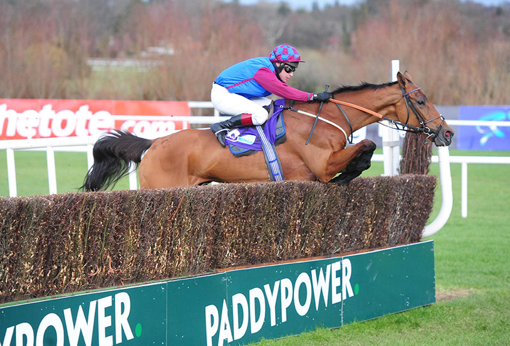Le Bague Au Roi jumps the last on his way to victory in last year's Grade 1 Flogas Novice Chase at Leopardstown.