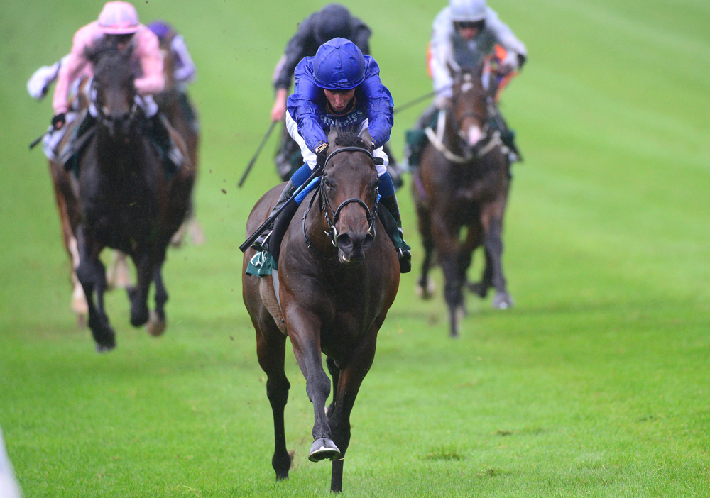 One of several strong contenders for his sire Shamardal in the Guineas, Pinatubo achieved an outstanding Timeform rating of 134 when winning the National Stakes by nine lengths at the Curragh.