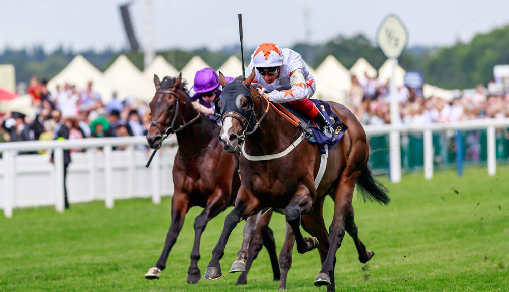 Advertise wins the Group 1 Commonwealth Cup with the filly Forever in Dreams (orange) shading Hello Youmzain for third.