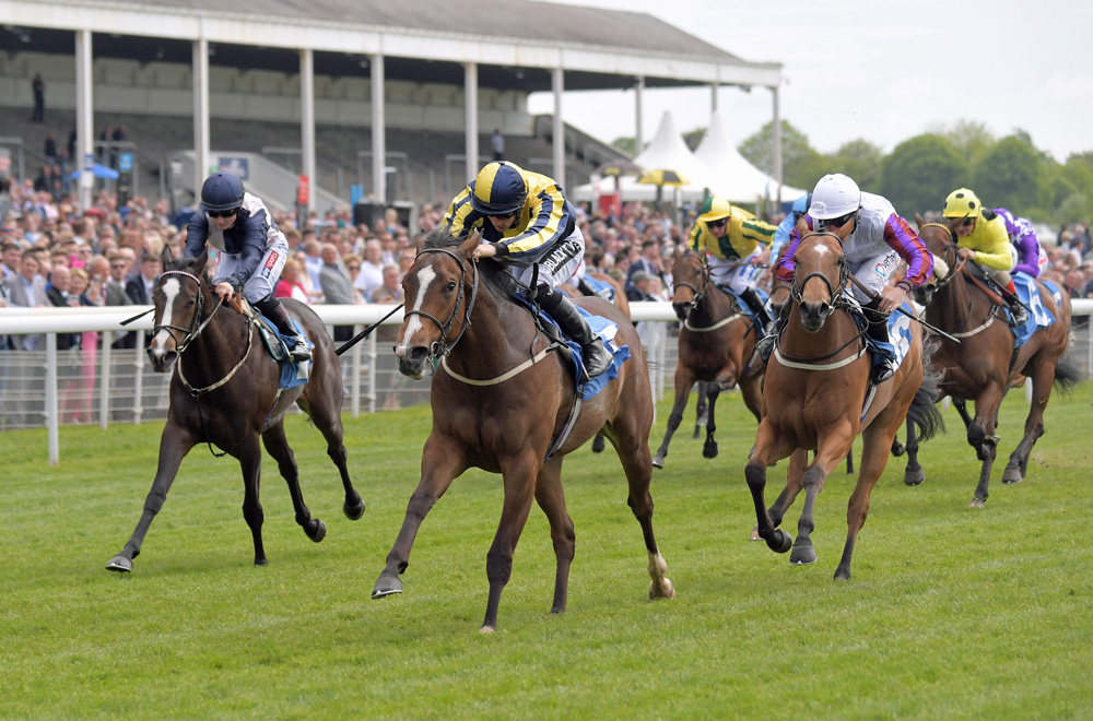 Good Vibes notches up his sire's first Black Type success in the Marygate Fillies' Stakes at York. She went on to finish third in the Gr.2 Lowther Stakes at the same venue.