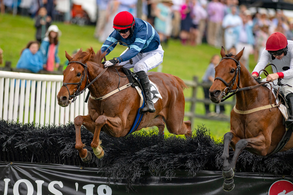 Already a winner of three hurdle races in the UK and runner up in a Grade 2, City Dreamer is pictured here winning his latest start in America, the valuable Marcellus Frost Champion Hurdle at Percy Warner Park.