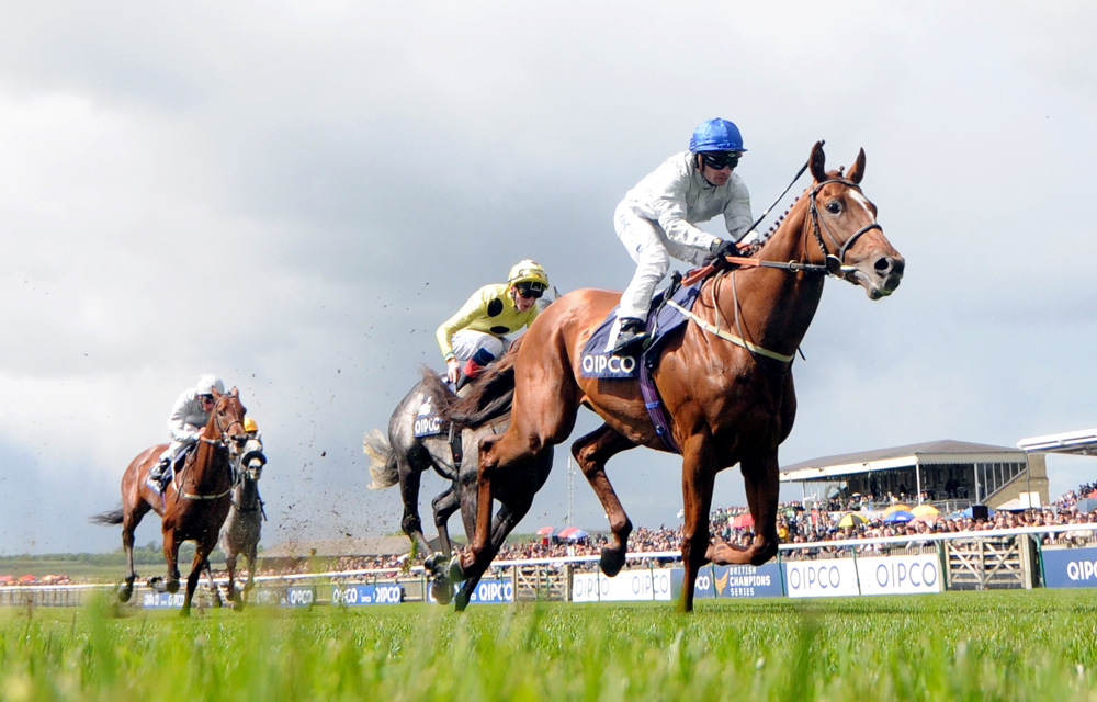 Group 2 Jockey Club Stakes winner Communique could make his presence felt at the Derby meeting or Royal Ascot.