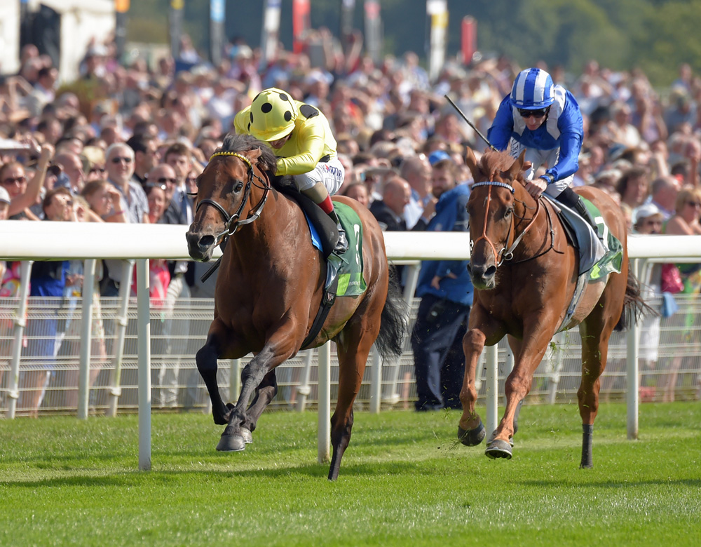 Postponed defeats a star-studded field in the Group 1 Juddmonte International Stakes.