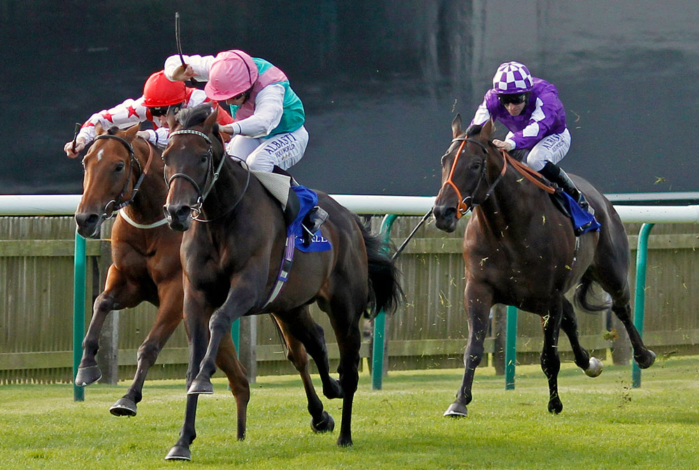 Time Test puts up an authorative display when winning the Group 2 Joel Stakes at Newmarket.