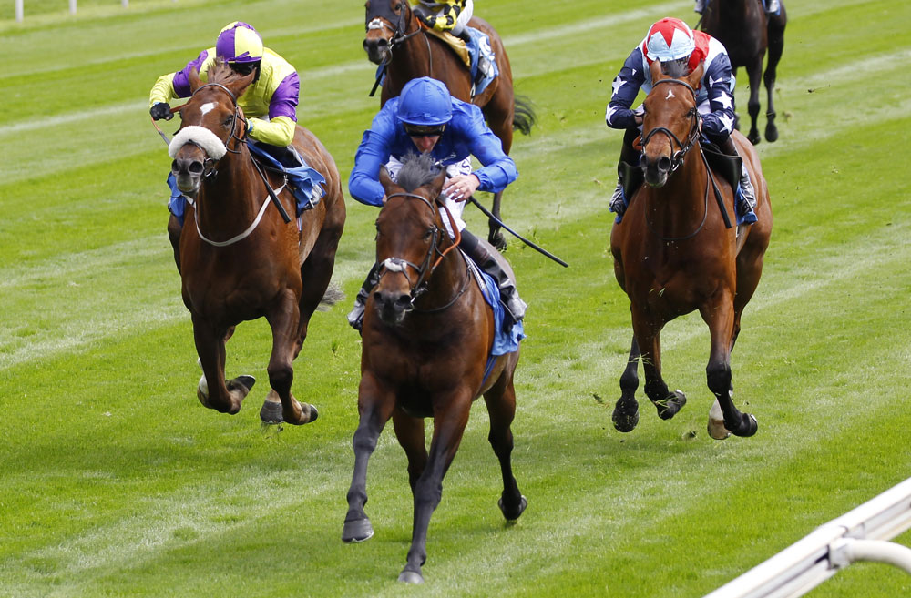 Harry Angel shrugs off a penalty to win the Duke of York Stakes, once again breaching the 130 threshold.