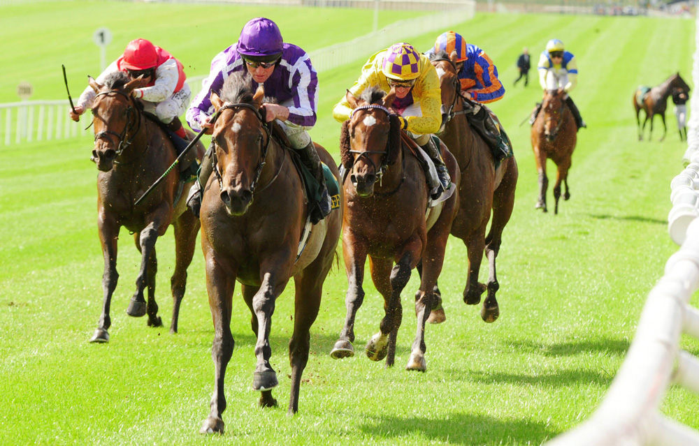 Pedro The Great wins the Group 1 Keeneland Phoenix Stakes at the Curragh.