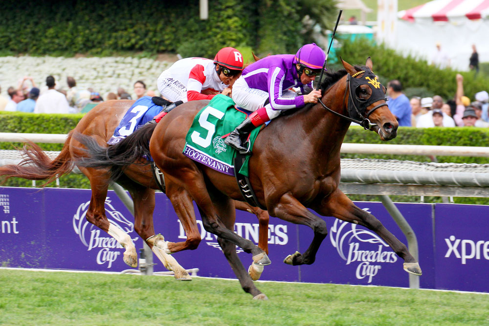 Hootenanny, from Quality Road's first crop, wins the 2014 Breeders' Cup Juvenile Turf.