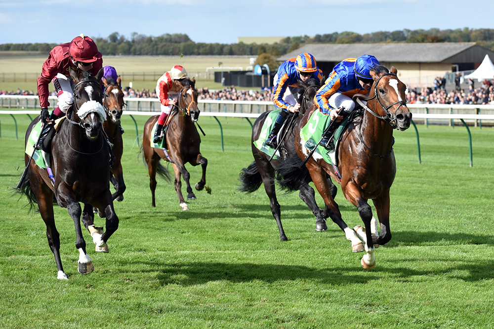 Royal Dornoch (right) beats Kameko in the Group 2 Royal Lodge Stakes at Newmarke