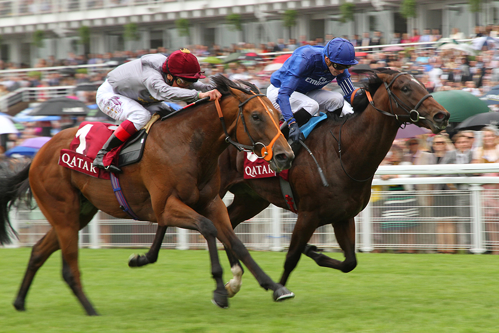 Mehmas defeats the subsequent Champion Sprinter Blue Point in the Group 2 Qatar Richmond Stakes.